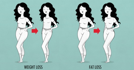 bony-to-bombshell-fat-loss-vs-weight-loss-muscle-building-program-for-women